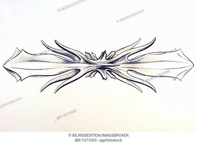 Historic illustration, tablet 21, title Acanthometra, marine protozoa, name Xiphaphacantha, 6/ Acantholonche peripolaris
