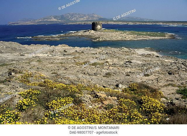 Isolotto (islet) La Pelosa with the 16th century Aragonese tower of the same name, Piana and Asinara islands in the background, Asinara national park, Sardinia