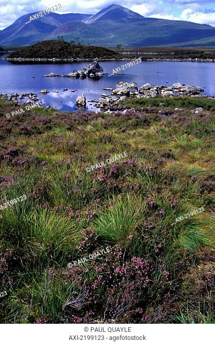 Loch Ba Near Summit Of Rannoch Moor In Highlands In Ben Nevis And Glen Coe National Scenic Area, Scotland