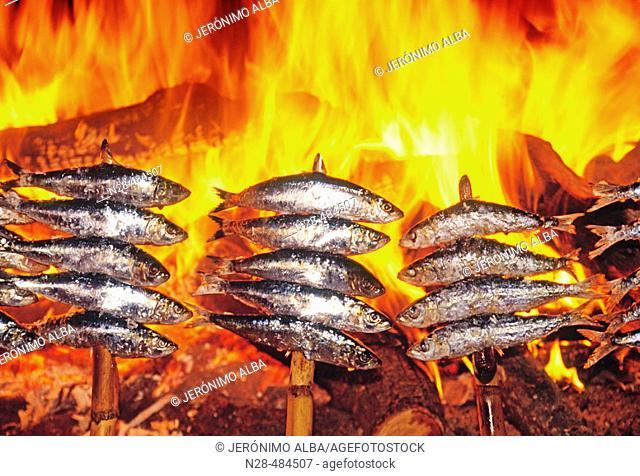 Sardines. Andalucia. Spain