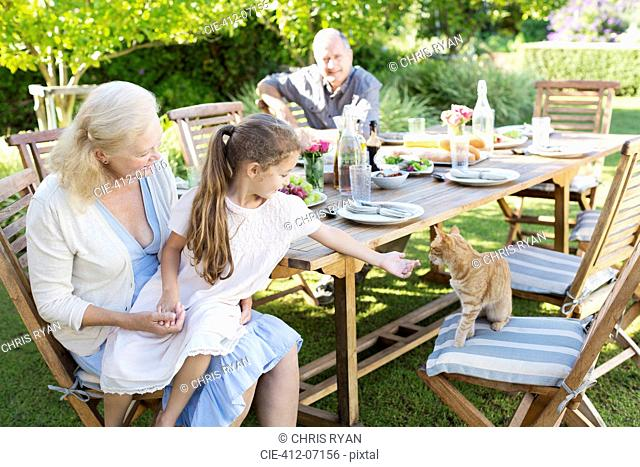 Girl asking to pet cat at table outdoors
