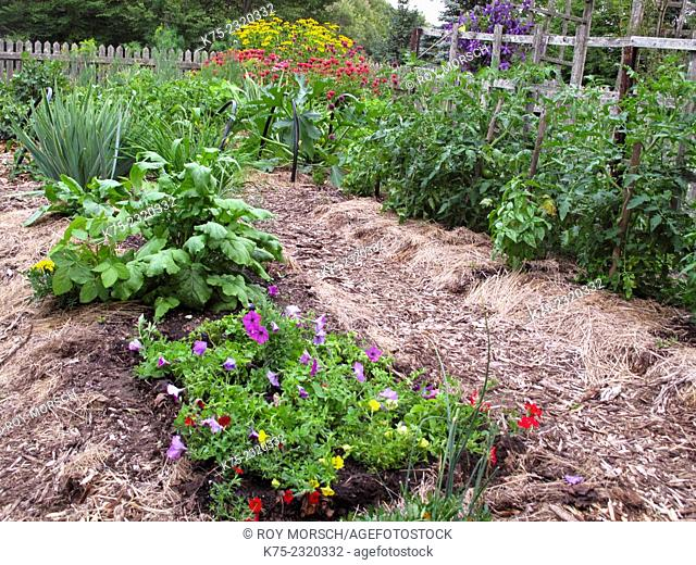 Organice vegetable and flower garden