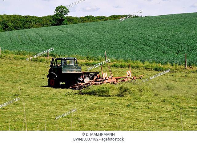 making hay with the hay tedder, Germany, North Rhine-Westphalia, Ruhr Area, Castrop-Rauxel