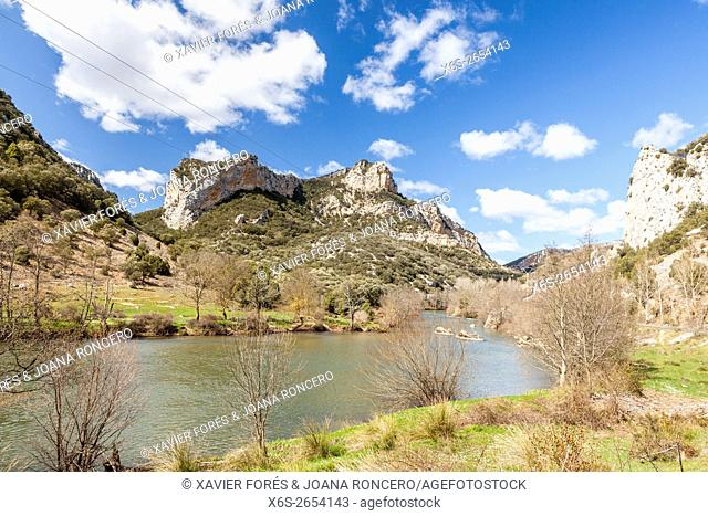 Gorge of Los Tornos near Tudanca del Ebro village, Paramos region, Burgos, Spain