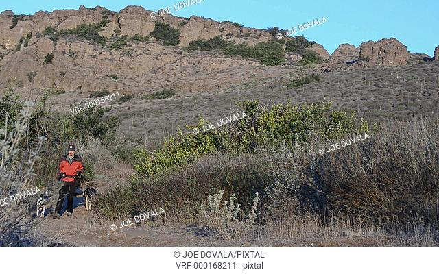 Man walking dogs on trail toward viewer, Thousand Oaks, California, USA