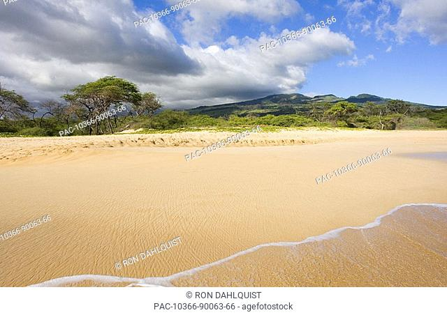 Hawaii, Maui, Makena State Park, Oneloa or Big Beach, water lapping onto shore, view from ocean looking back at vegetation growing along the beach