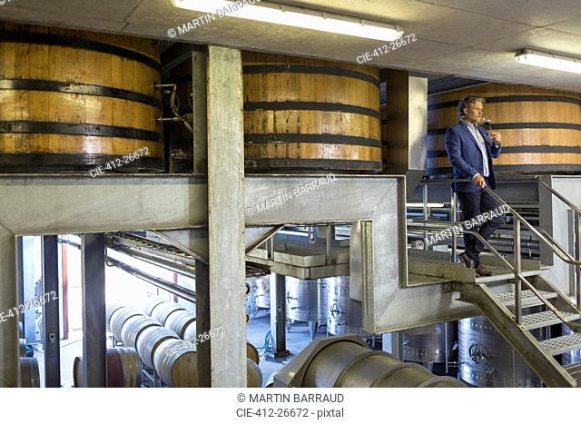 Vintner with red wine on platform in winery cellar