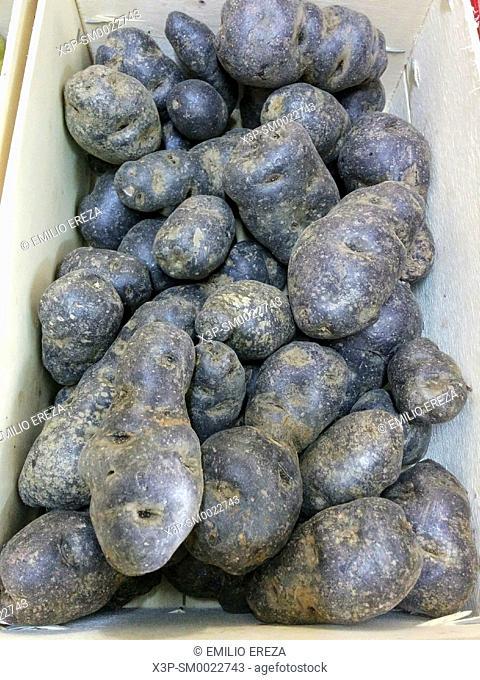 Blue potatoes for sale