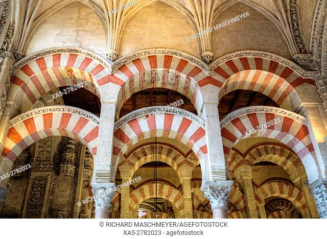 Arches and Columns, Great Mosque and Cathedral of Cordoba, UNESCO World Heritage Site, Cordoba, Spain