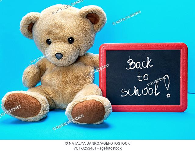 brown teddy bear holds red frame with words written in white chalk back to school, blue background