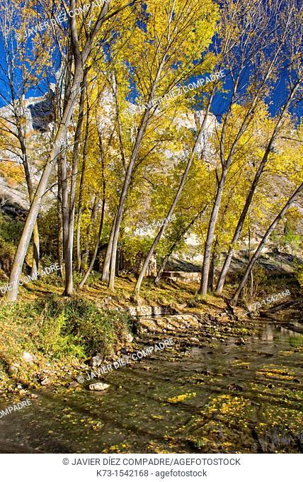 Riaza River. Hoces del Riaza Natural Park. Maderuelo. Segovia province. Castilla y Leon. Spain