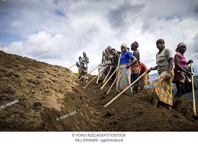 Rwanda, surrounding of Kibuye, peasants at work