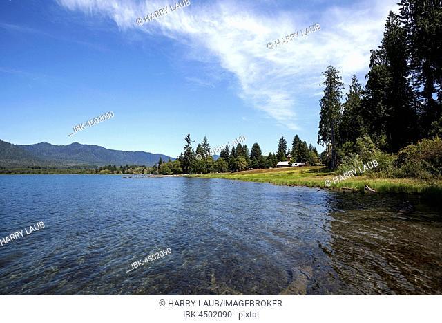 Lake Quinault near Quinault, Olympic Peninsula, Washington, USA