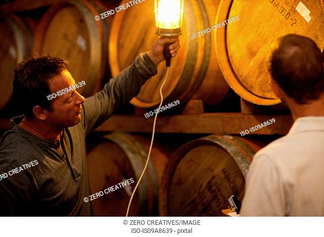 Checking wine aging in barrels