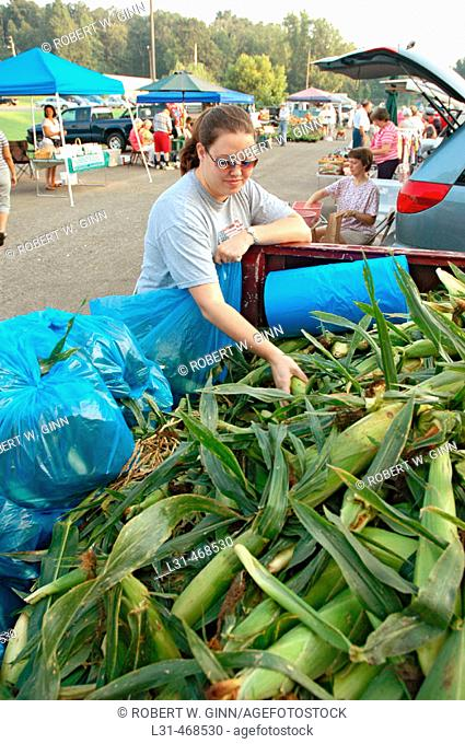 Corn being sold at farmers market in small town to public from the growers