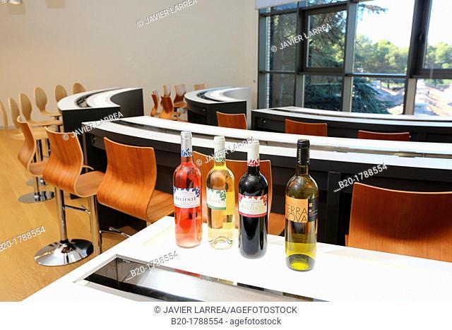 Wine Tasting Hall, Olarra winery, Rioja, Logroño, Spain