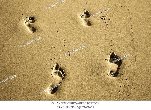 Foot Prints On Beach