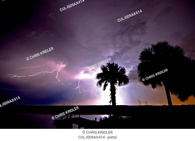 Lightning illuminates a purple sky, palm trees and the water at the St. Johns River west of Cocoa, Florida, USA