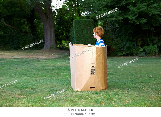 Young boy watching from cardboard box in garden