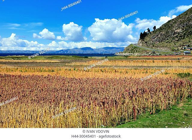 Lake Titicaca between Pomata and Juli, Puno, Peru