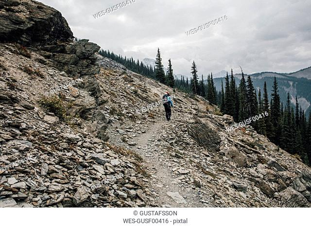 Canada, British Columbia, Yoho National Park, hikers on trail at Mount Burgess