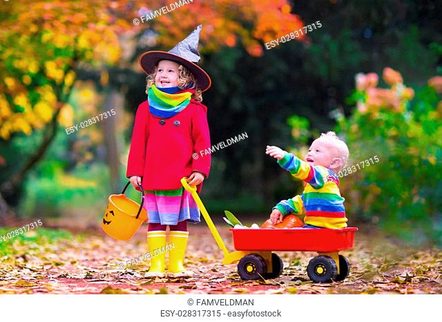 Little girl in witch costume and baby boy in wheel barrow holding a pumpkin playing in autumn park. Kids at Halloween trick or treat