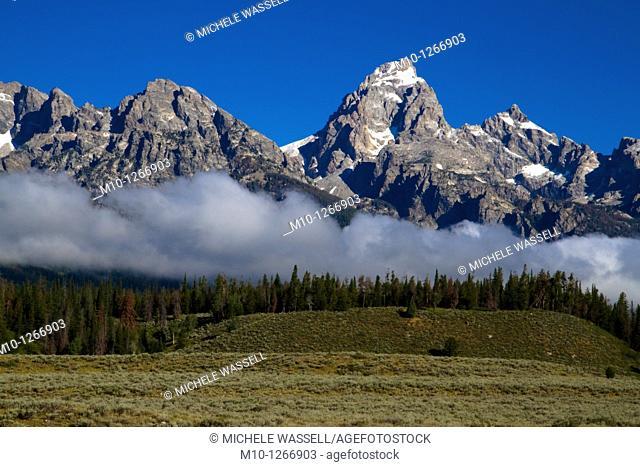Albright View, Grand Tetons National Park