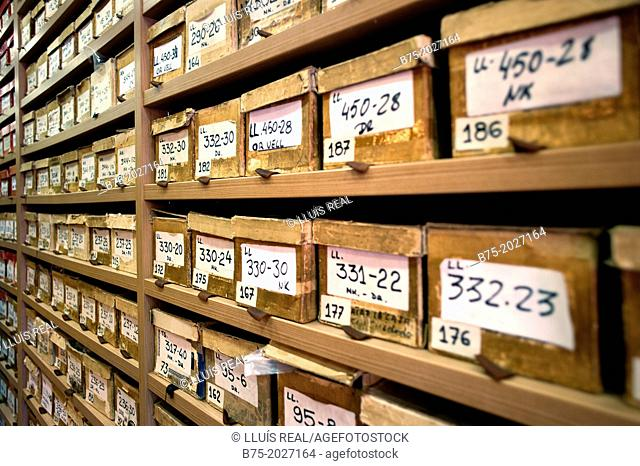 closeup of shelf full of boxes ordered by references in a warehouse