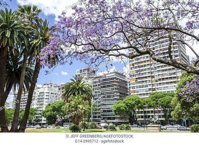 Argentina, Buenos Aires, Bosques de Palermo, Avenida del Libertador, Parque 3 de Febrero, luxury apartments, buildings, park, Jacaranda tree, blooming, Hispanic