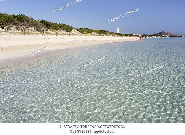 Playa de Muro, Muro, Majorca, Balearic Islands, Spain