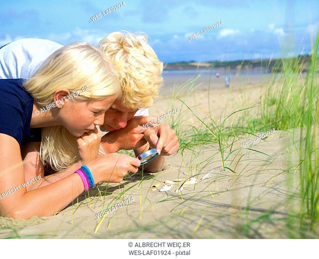 France, Bretagne, Sainte-Anne-la-Palud, La Plage de Treguer, brother and sister examining seashells on the beach