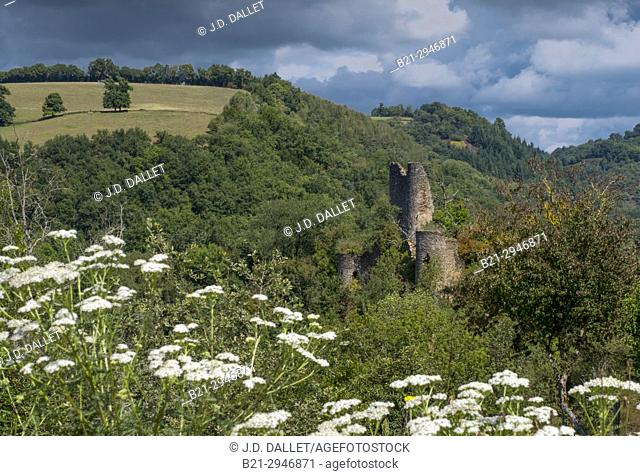 France, Auvergne,Cantal, ruins of the 12th century. Chaulmes castle, by Saint Constant
