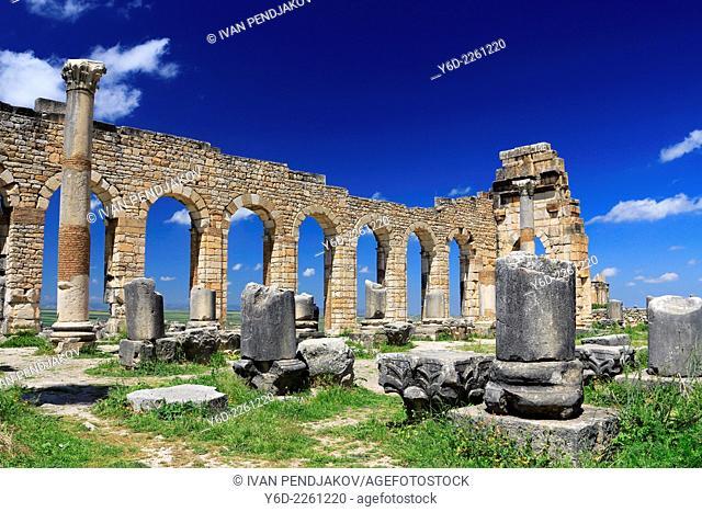 The Basilica, Volubilis, Morocco