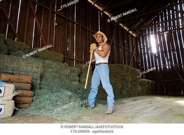 Rancher bailing hay. Poway, California. USA