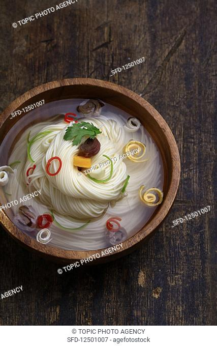 Janchi Guksu (Warm noodle soup, Korea)
