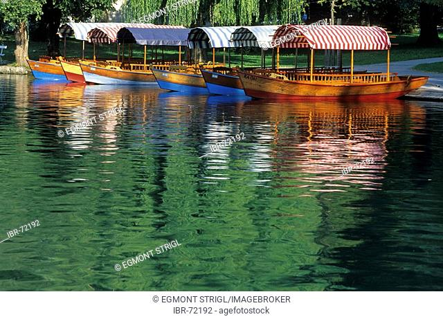 Traditional wooden boats, Pletten, on the lake of Bled, Gorenjska region, Slovenia
