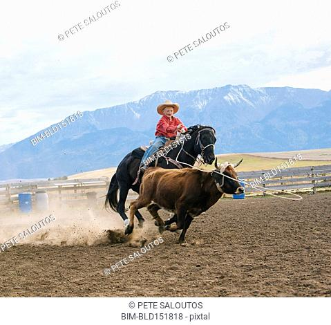 Caucasian boy chasing cattle at rodeo