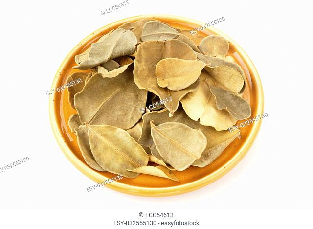 Dried lemon leaves on white background