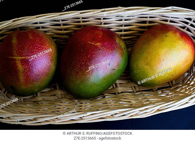 Three mangoes in a basket