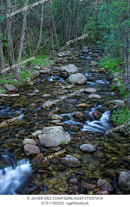 Iruelas River  Iruelas Valley Natural Reserve  Avila province  Castilla y Leon  Spain