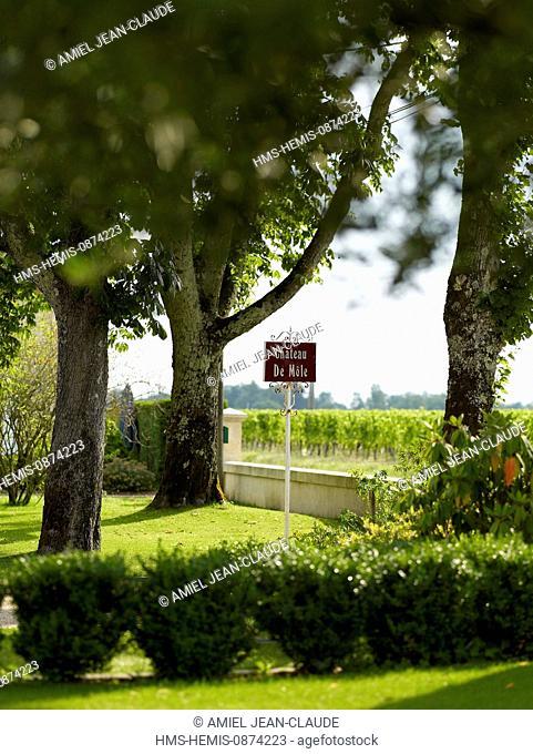 France, Gironde, feature : Le Grand Bordeaux et le bassin d'Arcachon, Puisseguin, garden of Mole castle