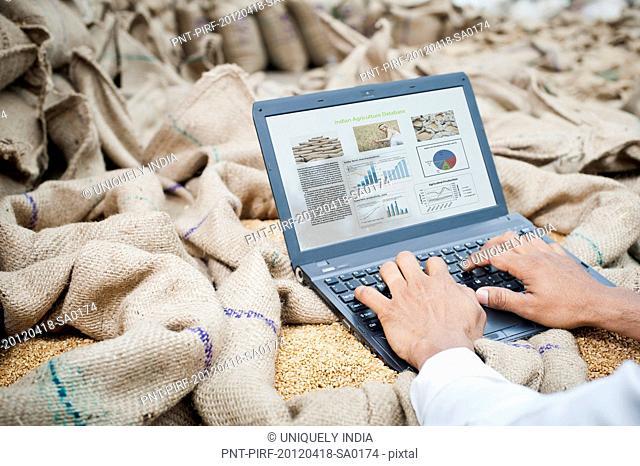 Man's hand working on a laptop on wheat sacks, Anaj Mandi, Sohna, Gurgaon, Haryana, India