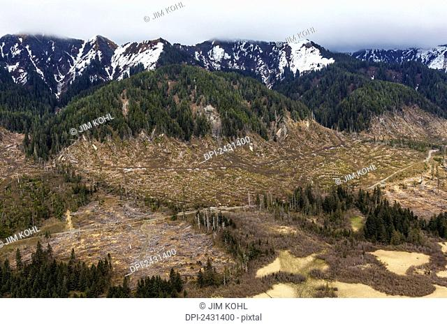 Aerial view of clearcut logging operation outside of Yakutat, Southeast Alaska; Alaska, United States of America