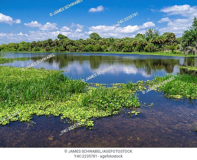Deer Prarie Creek Preserve in Venice Florida