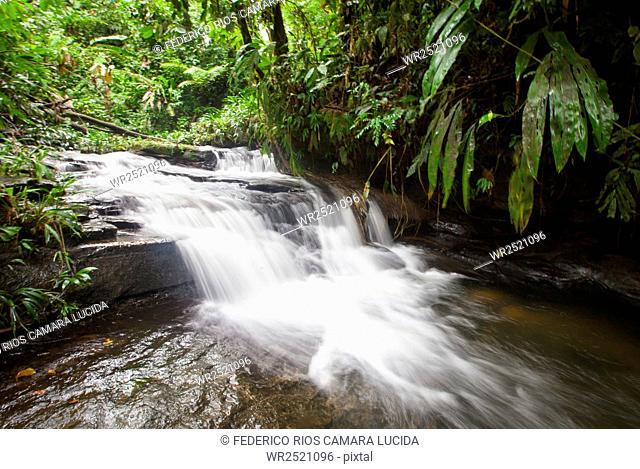 Choco, Antioquia, Colombia