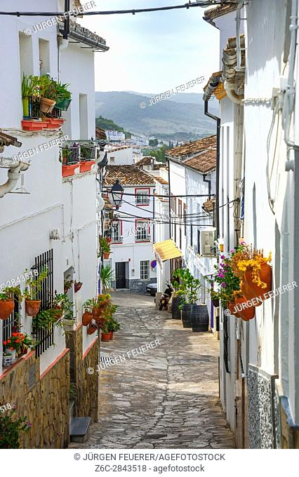 Flowery lane of the town Ubrique in the province of Cádiz, largest of the White Towns, Pueblos Blancos of Andalusia, Spain