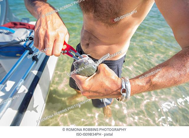 Man pulling hook from fish's mouth after being caught, mid section, Fort Walton Beach, Florida, USA