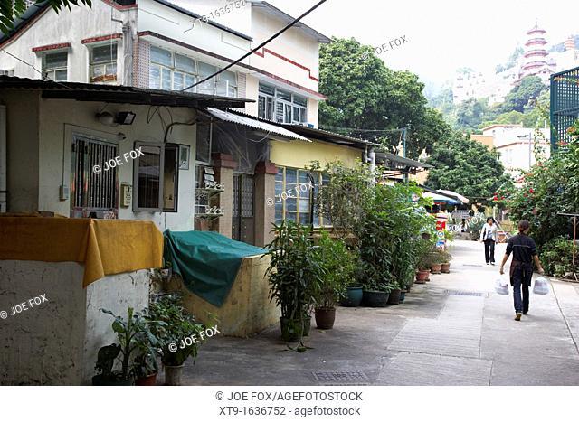 houses and street in pai tau village sha tin hong kong hksar china asia