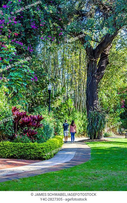 Sunken Gardens 100 year old botanical gardens in St Petersburg Florida