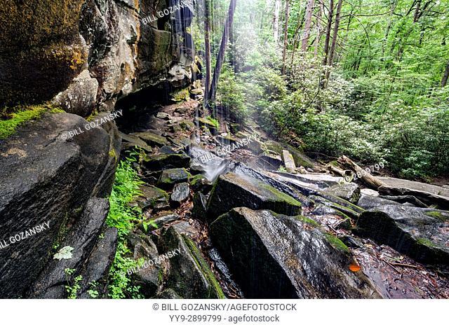 Slick Rock Falls - Pisgah National Forest - near Brevard, North Carolina, USA